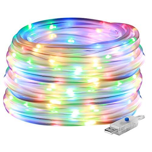 Garden Led Rope Lights in US - 5