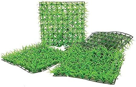 Kunstrasenfliese Für Schaufenster Und Haus 25 X 25 Cm Amazon De