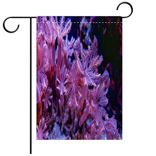 BEICICI Custom Personalized Garden Flag Outdoor Flag Clavularia Glove polyps Coral in Saltwater Reef Aquarium Tank Decorative Deck, Patio, Porch, Balcony Backyard, Garden or Lawn