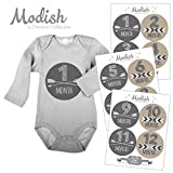 Baby Shower Gift Idea: Modish Labels, 12 Monthly Baby Stickers, Baby Month