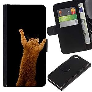 NEECELL GIFT forCITY // Billetera de cuero Caso Cubierta de protección Carcasa / Leather Wallet Case for Apple Iphone 6 // LINDO CAT DIVERTIDO DE NARANJA