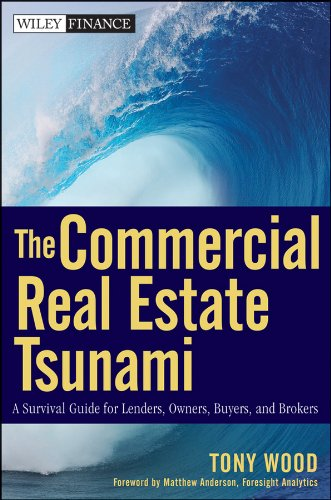 The Commercial Real Estate Tsunami: A Survival Guide for Lenders, Owners, Buyers, and Brokers (Best Commercial Mortgage Lenders)