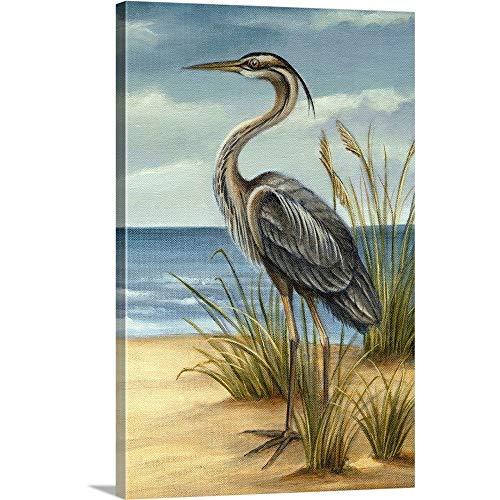Shore Bird II Canvas Wall Art Print, 16