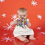 Manhattan-Toy-Skwish-Color-Burst-Rattle-and-Teether-Grasping-Activity-Toy