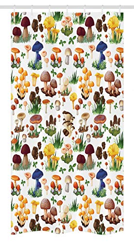 Ambesonne Mushroom Stall Shower Curtain, Pattern with Types of Mushrooms Wild Species Organic Natural Food Garden Theme, Fabric Bathroom Decor Set with Hooks, 36 W x 72 L Inches, - Curtain Mushroom