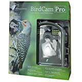 Wingscapes Birdcam 2 In., 6 In.