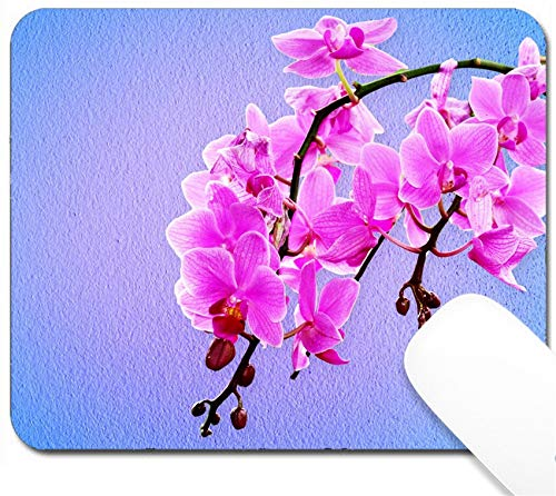 (MSD Mouse Pad with Design - Non-Slip Gaming Mouse Pad - Image ID: 32648713 Pink Orchid Flowers on a Pastel Background)
