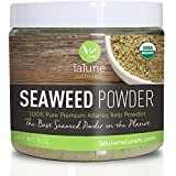 Seaweed Powder - Organic Kelp Powder - 20 FREE Recipes and Scoop - Cellulite Wrap, Seaweed Body Wraps, Organic Face Mask, Scrub - Best Cellulite Treatment, Remover - 100% Pure Ascophyllum Nodosum