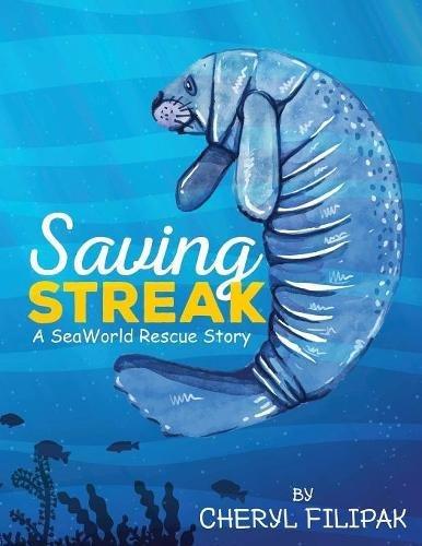 Download Saving Streak pdf epub