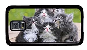 Hipster fashion Samsung Galaxy S5 Case Adorable Grey Kittens PC Black for Samsung S5