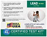 Lead Test Kit in Dust Wipes 20PK (1 Bus. Day) Schneider Labs