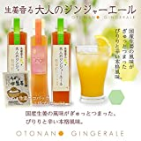 Ginger ale 2 + ginger syrup 1 Set of Umee ginger eco-pack with one bag