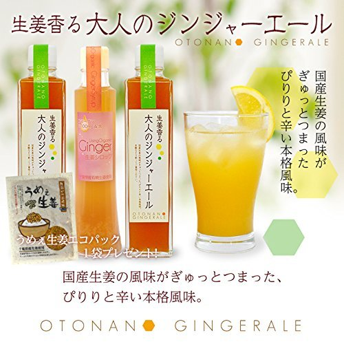 Ginger ale 2 + ginger syrup 1 Set of Umee ginger eco-pack with one bag by Ginger workshop