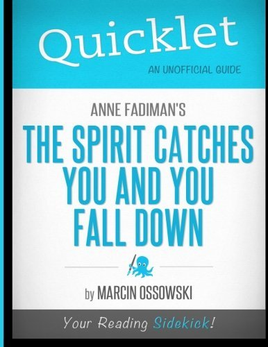 Spirit Catches You and You Fall Down&nbspEssay