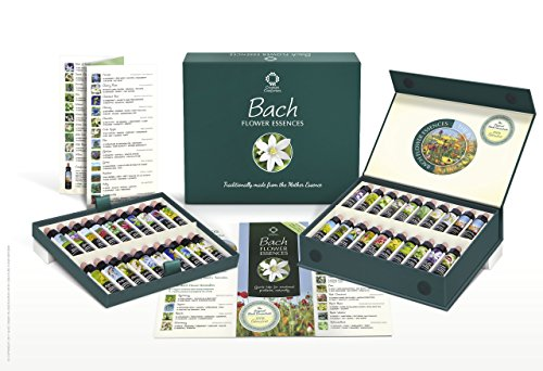 Kit Practitioner (Bach Flower Remedy Set of 40 x 10ml Stock Essences. Boxed Practitioner Kit of Traditionally Made Remedies)