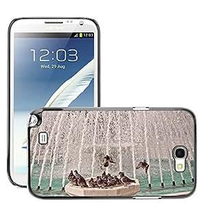 Super Stellar Slim PC Hard Case Cover Skin Armor Shell Protection // M00125378 Bird Bath Pigeons Fountain Birds // Samsung Galaxy Note 2 II N7100