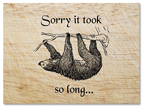 (Sorry It Took So Long Sloth Greeting Card - Blank on the Inside - Includes 12 Cards and Envelopes - 5.5