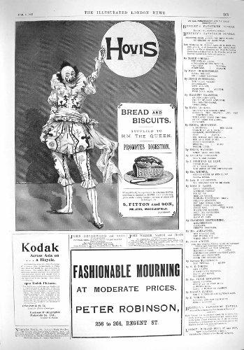 old-original-antique-victorian-print-1895-advertisement-hovis-bread-biscuits-kodak-robinson-155p206
