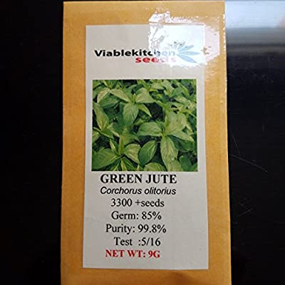 Vegetable Green Jute Seeds,saluyot, Molokhia, Egyptian Spinach Seeds, Rau Day Seeds 3300+(9g) By Kitchenseeds .US seller