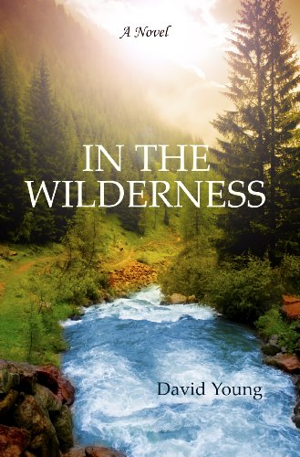 IN THE WILDERNESS by [Young, David]