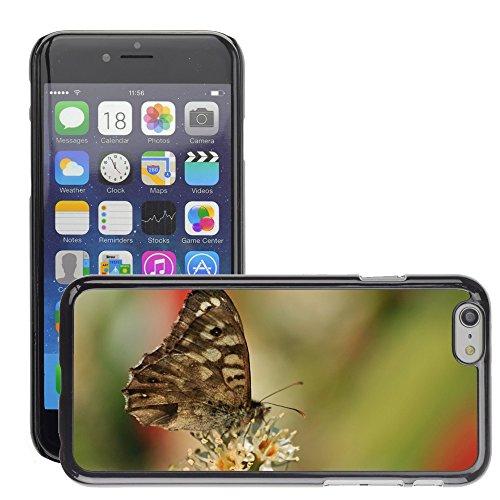 "Just Phone Cases Hard plastica indietro Case Custodie Cover pelle protettiva Per // M00129100 Papillon Papillons animaux Insecte // Apple iPhone 6 PLUS 5.5"""