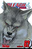 Bleach, Vol. 62: Heart of Wolf