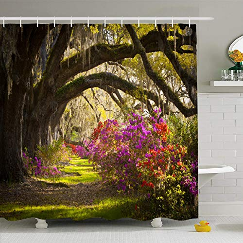 - Ahawoso Shower Curtain 72x72 Inches Photography Red South Charleston Sc Plantation Live Oak Morning Trees Nature Parks Pink Fantasy Waterproof Polyester Fabric Set with Hooks
