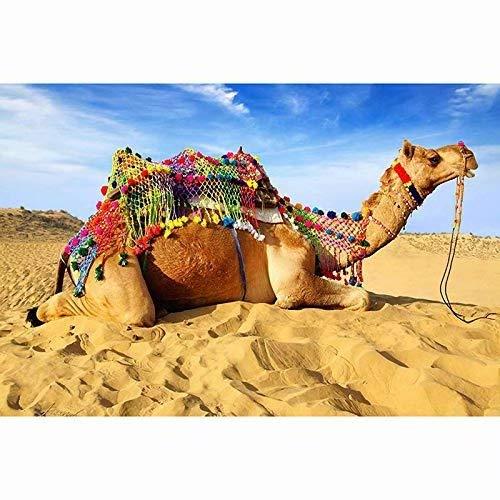 (5D Diy Diamond Paintings Diamond Cross,Rhinestone Diamond, Sunlit Desert Camel(Frameless))