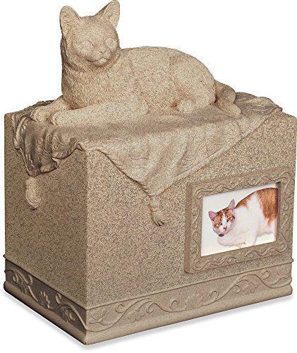 - Angel Star Pet Urn for Cat, Dark Brown