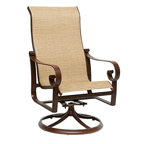 Twilight Patio Chair (Woodard  Belden Sling High-Back Swivel Rocker, Twilight, Volt Silver)