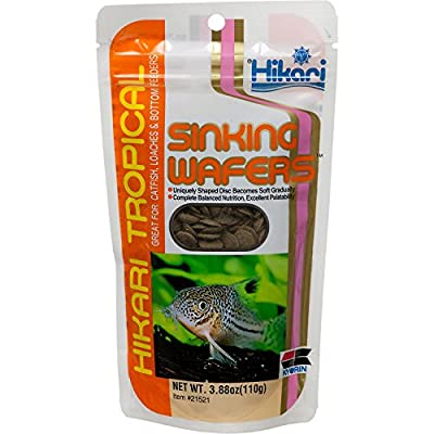 Hikari Tropical Sinking Wafers for Catfish, Loaches and Bottom Feeders from Hikari