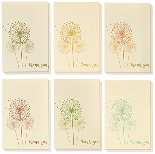 Thank You Cards - 48-Count Thank You Notes, Bulk Thank You Cards Set - Blank on The Inside, 6 Vintage Dandelion Designs - Includes Thank You Cards Envelopes, 4 x 6 inches