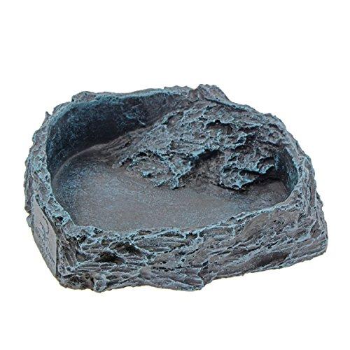 (Saim Worm Dish Reptile Rock Food Water Bowl)
