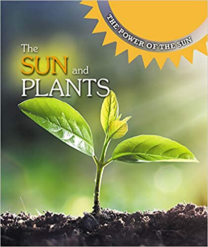 The Sun And Plants The Power Of The Sun Kaitlyn Duling