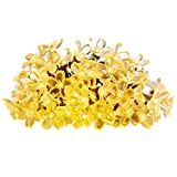 InnooLight Peach Blossoms 40 LED Battery Operated Flower String Lights (Warm White)