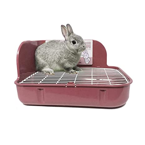 KOBWA - Inodoro para Mascotas, para Esquina de Inodoro, para ...