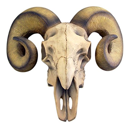 Ram Skull Rustic Wall Head Mount 14 Inch