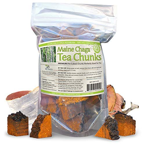 Maine USA Chaga Mushroom Premium Tea Chunks, 4oz, Wild Harvested, 34-50 -