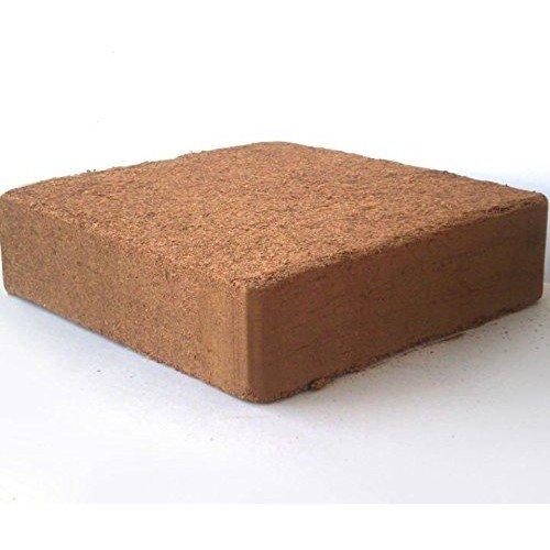 Coco Choir Block (1, 11 Pound Block)