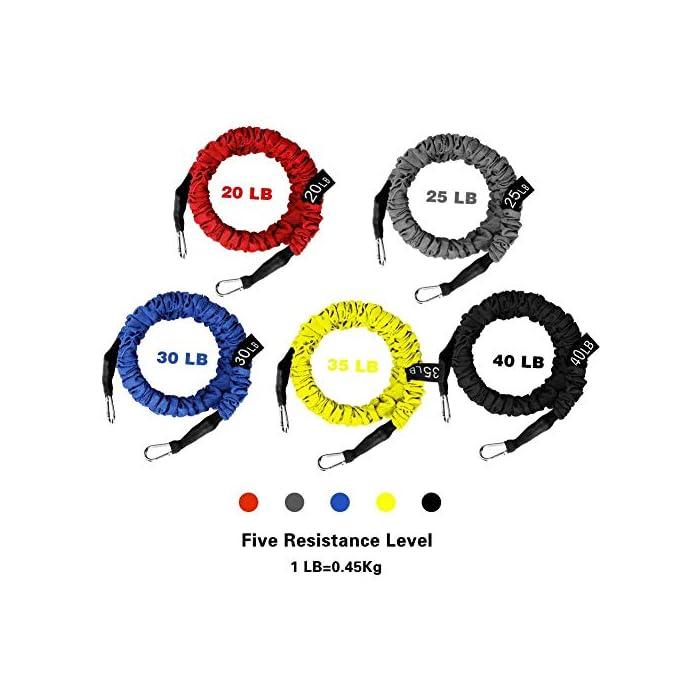 51fOQUY9EYL ✔✔5 Niveles de Resistencia -- Se trata de un set de bandas elásticas de resistencia, las cuerdas están fabricadas en látex natural, de 5 colores y con ganchos en los extremos de metal de alta resistencia. Cada una una tiene una intensidad diferente: Rojo (20 libras), Gris (25 libras), Azul (30 libras), Amarillo (35 libras), Negro (40 libras). ✔✔Accesorio Ideal -- Viene con 5 bandas de diferentes tensiones, 2 ancla para la puerta, 2 correas de tobillo ajustables, 2 asas o empuñaduras de espuma, 1 bolsa de color negro para su transporte o almacenamiento. Puede ser transportado fácilmente para usar en cualquier lugar y en cualquier momento. Un kit muy completo y económico. ✔✔Fácil de Usar & Más Seguro -- Se hace ejercicio seguro y cómodo. Son fáciles de manejar, pudiéndolo enganchar en cualquier puerta, armario, columna, etc. Son fantasticas para tonificar los músculos, reducir grasa, ejercicio de mantenimiento, y realizar otro tipo de ejercicios, destinado a trapecio, hombros o dorsales. Por favor click este link: https://youtu.be/Z8crojsKfJ4, este video para decirle cómo usar este conjunto de cuerdas elásticas para realizar los ejercicios. Set de cuerdas elásticas para fitness