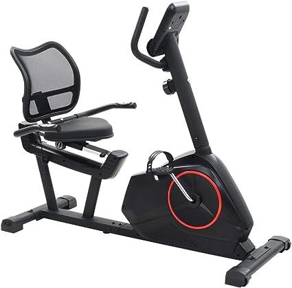 vidaXL Bicicleta Estática Reclinable Masa Rotatoria 10 kg Fitness ...