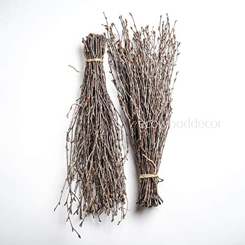 Birch Branches for craftwork or vase decoration. Set of 2 Bundles (100 twigs)