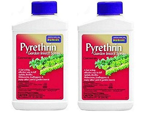 Bonide Product Pyrethrin Concentrate