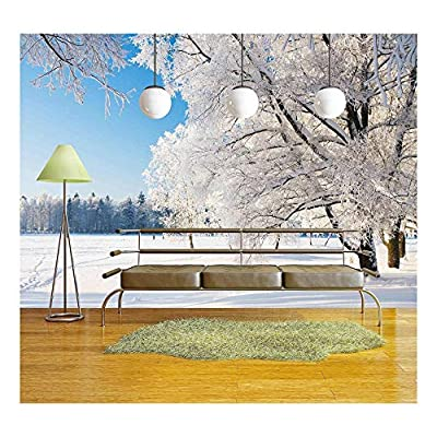 Winter Park in Snow Wall Decor Wall Mural...