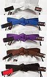 Tatami Fightwear BJJ Rank Belts