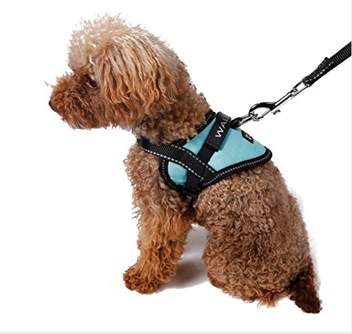 Register My Service Animal, LLC Emotional Support Animal Harness & Matching Leash Set For Small & Teacup Dogs | Three Fun Patches | Four Colors | Three sizes: 11'' - 19'' Girth by Register My Service Animal, LLC (Image #7)