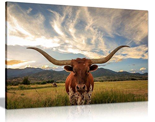 Cow Prints Longhorn Steer Animal Wildlife Canvas Wall Art Picture Print 12×8
