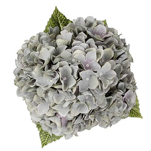 Blooming Paradise Artificial Fake Flowers Plants Silk Hydrangea Arrangements Wedding Bouquets Decorations Plastic Floral Home Kitchen Garden Party Festival Bar DIY (Gray Green,5 Flower Heads)