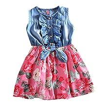 Theplus Girls Princess Dress Sleeveless Denim Tops Floral Tutu Skirts