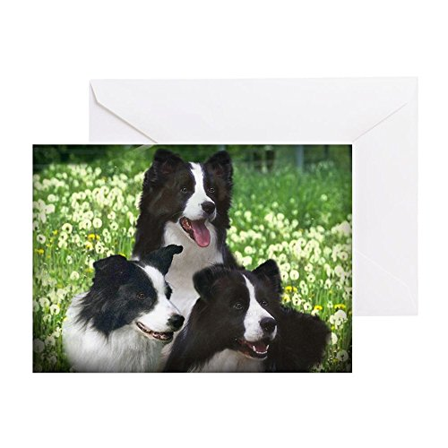 CafePress Border Collies (3) Greeting Card, Note Card, Birthday Card, Blank Inside Matte ()